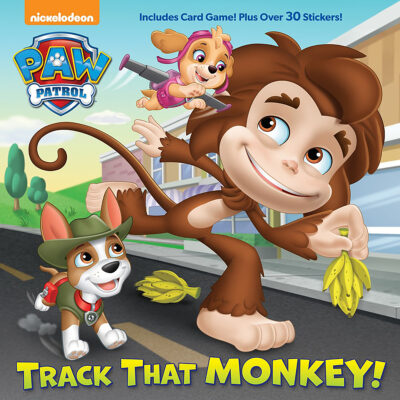 Paw Patrol Phonics Box Set by Jennifer Liberts
