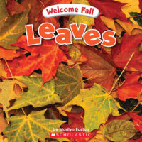 Welcome Fall: Leaves