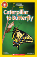 National Geographic Kids™: Caterpillar to Butterfly