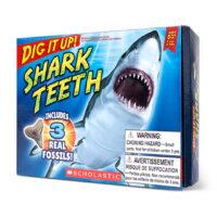 Dig It Up! Shark Teeth
