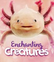 Enchanting Creatures