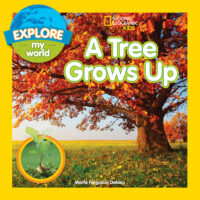 National Geographic Kids™: A Tree Grows Up