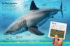 Go! Field Guide: Sharks