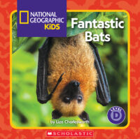 National Geographic Kids™: Fantastic Bats