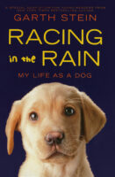 Racing in the Rain: My Life as a Dog: Young Readers Edition