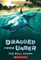 Dragged from Under: The Bull Shark