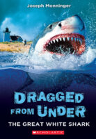 Dragged from Under: The Great White Shark