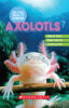 Do You Really Know Axolotls?