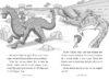 Dragon Masters: Wave of the Sea Dragon