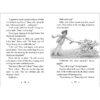 Nancy Drew Clue Book #9: Springtime Crime