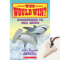 Who Would Win?® Hammerhead vs. Bull Shark Plus Shark-Tooth Pendant