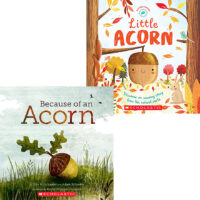 Little Acorn Life Cycle Pack