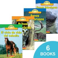 Paquete Ciencias del mundo natural para pequeños lectores