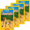 National Geographic Kids™: Cheetahs 4-Book Pack