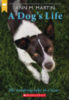 A Dog's Life: The Autobiography of a Stray 10-Book Pack