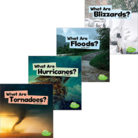 Wild Weather 4-Pack