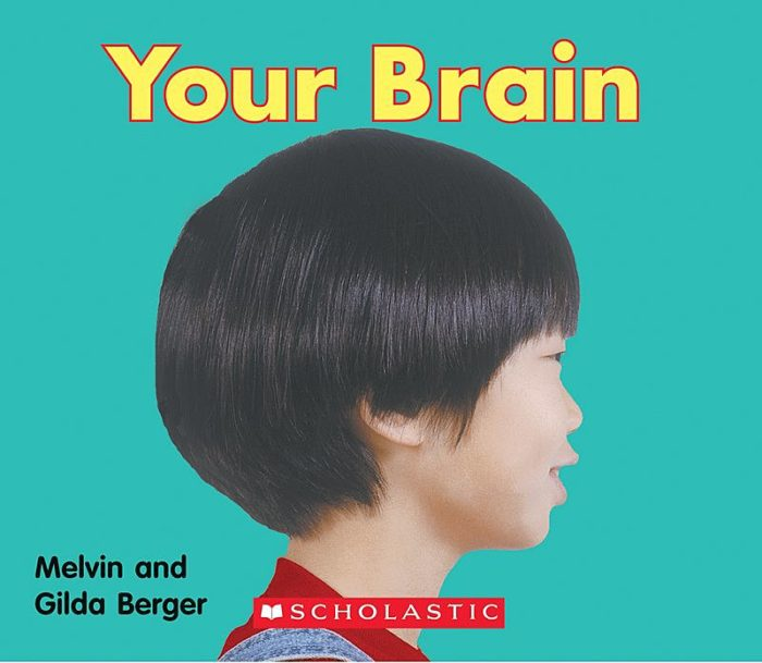 Scholastic Time-to-Discover Readers: Your Brain