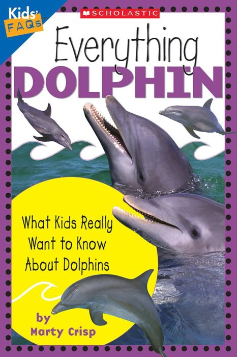 Kids' FAQs: Everything Dolphin