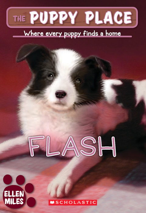 The Puppy Place: Flash