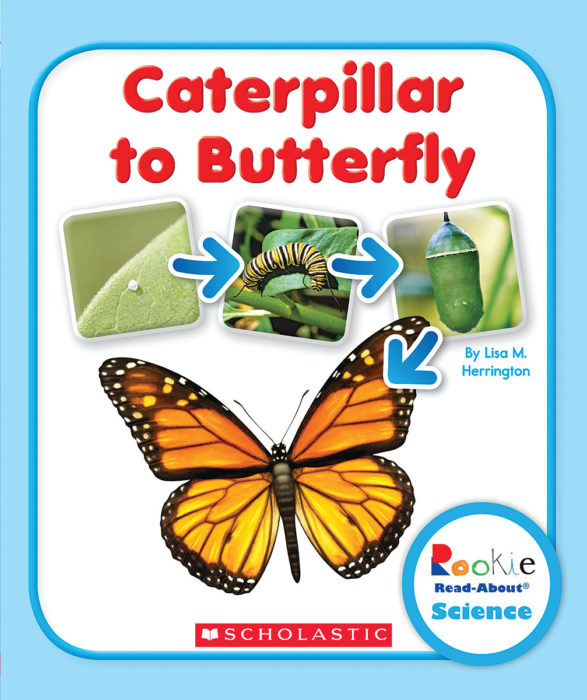 Rookie Read-About® Science-Life Cycles: From Caterpillar to Butterfly