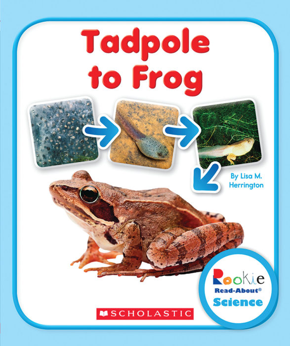 Rookie Read-About Science-Life Cycles: From Tadpole to Frog