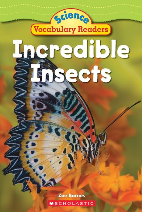 Science Vocabulary Readers: Incredible Insects