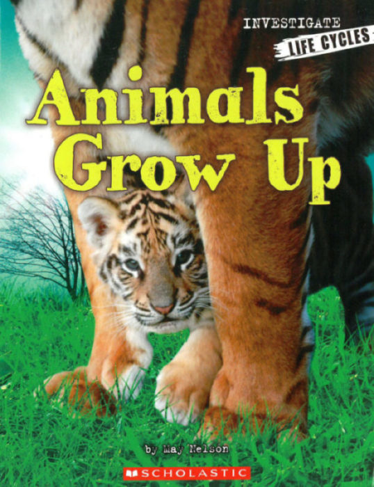 Investigators: Life Cycles: Animals Grow Up