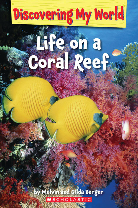 Discovering My World: Under the Sea: Life on a Coral Reef