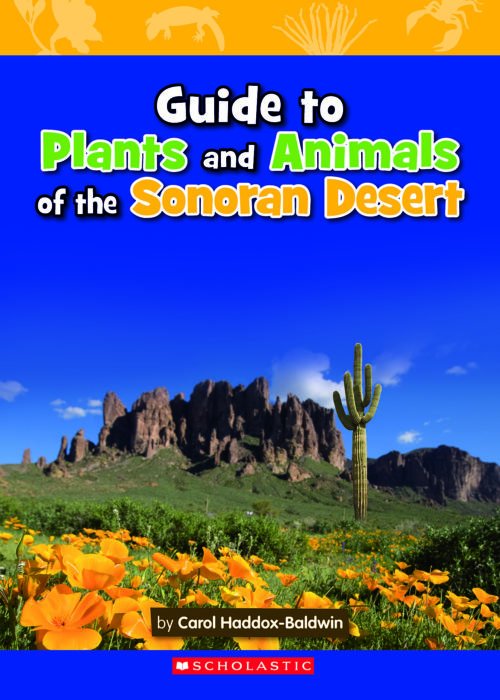 Guide to Plants and Animals of the Sonoran Desert