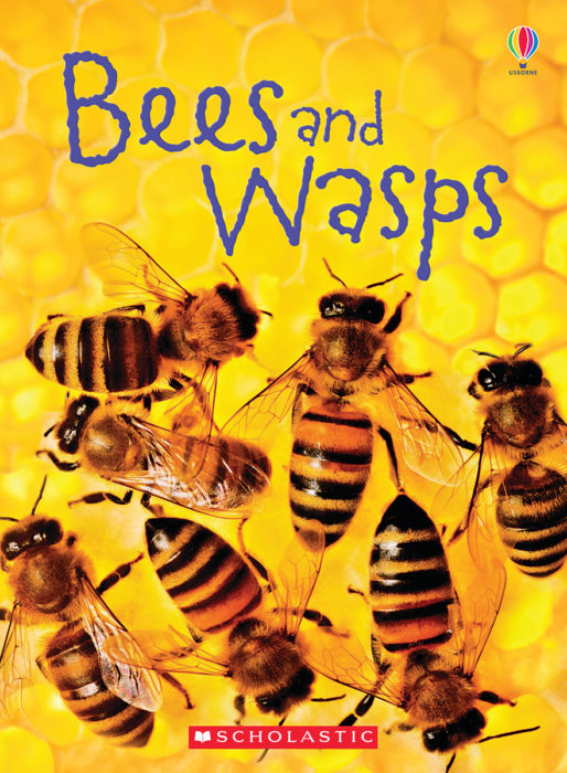 Usborne Books Beginners: Bees and Wasps