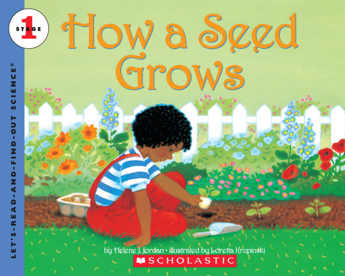 Let's-Read-and-Find-Out Science: How a Seed Grows