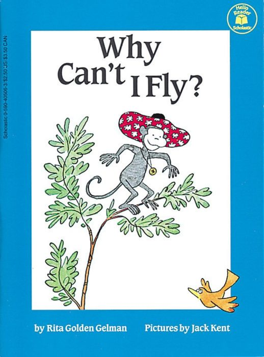 Why Can't I Fly?