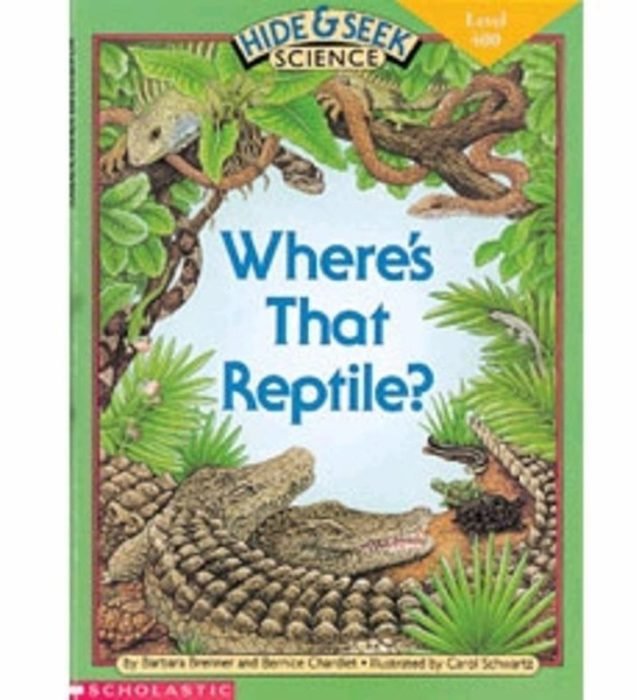 Where's That Reptile?