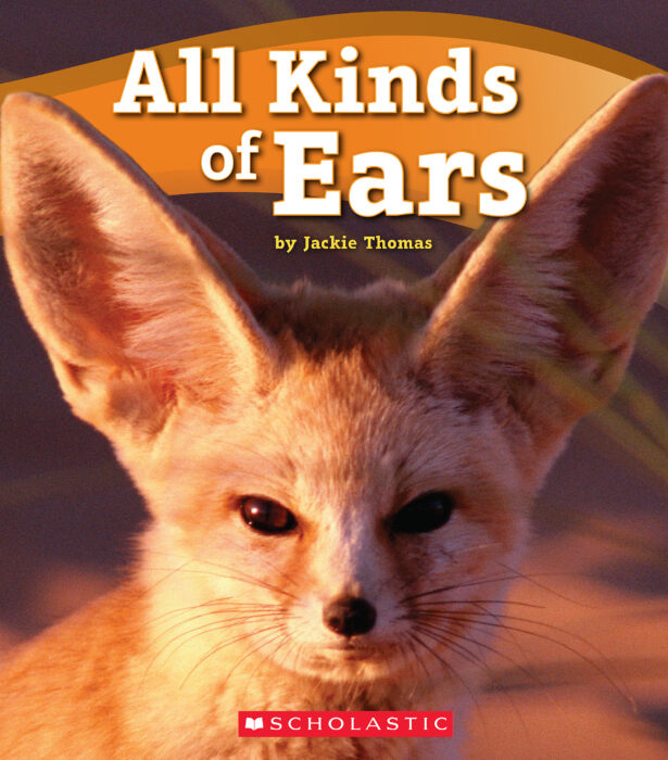 All Kinds of Ears