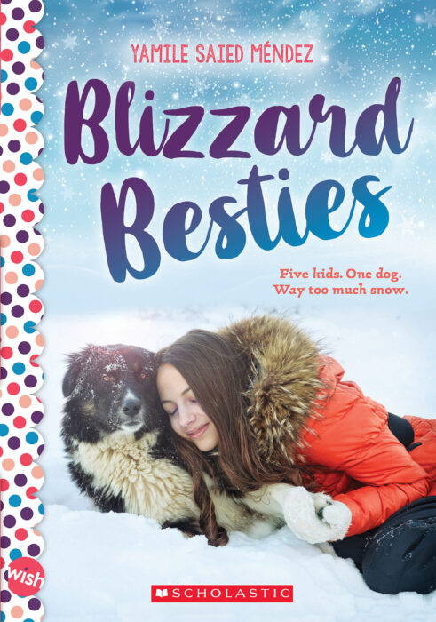 Wish Novels: Blizzard Besties