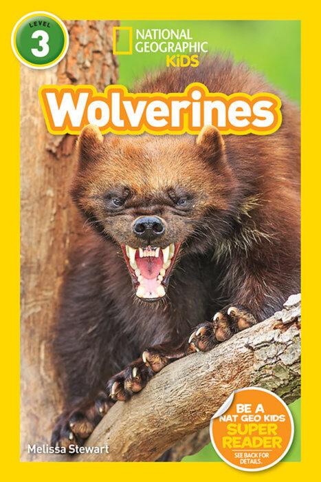National Geographic Kids Readers: Wolverines