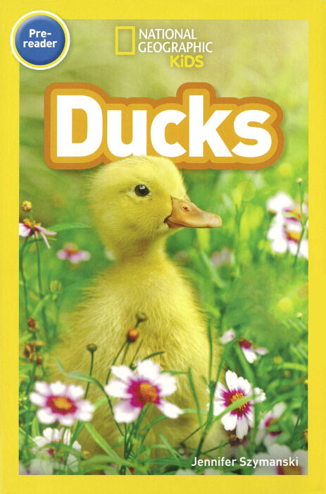 National Geographic Kids Readers: Ducks