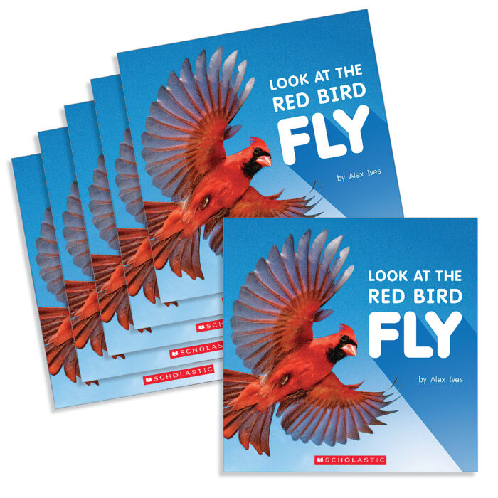 Guided Reading Set: Level A- Look at the Red Bird Fly