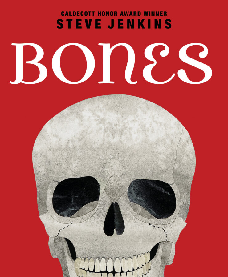 Steve Jenkins - Bones