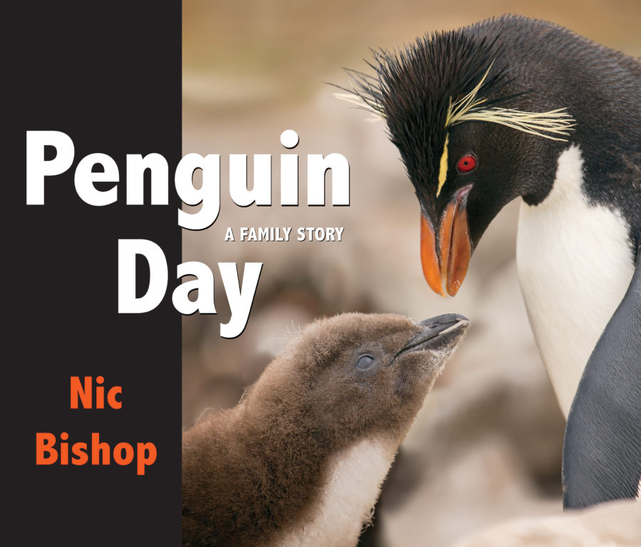 Nic Bishop - Penguin Day