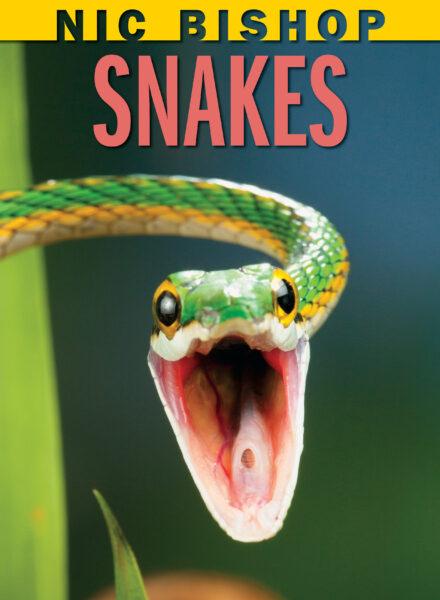 Nic Bishop - Nic Bishop Snakes