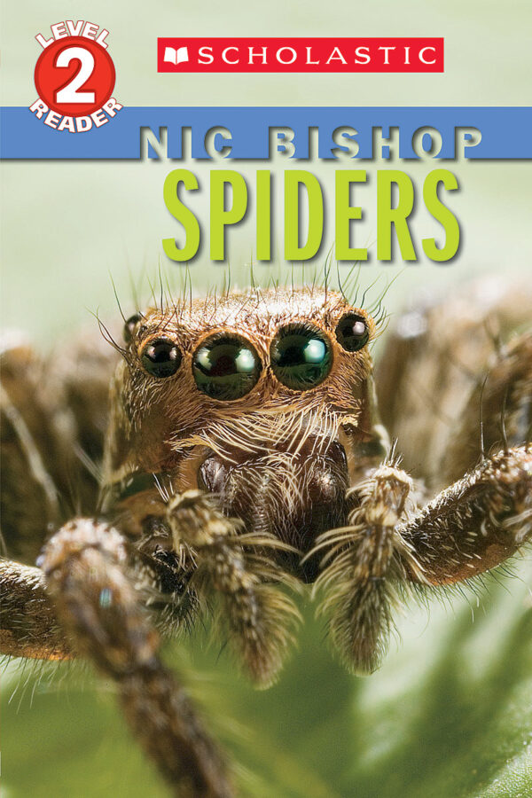 Nic Bishop - Spiders