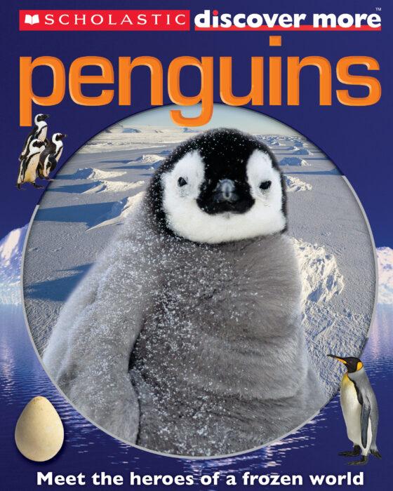 scholastic discover more  penguins by penelope arlon