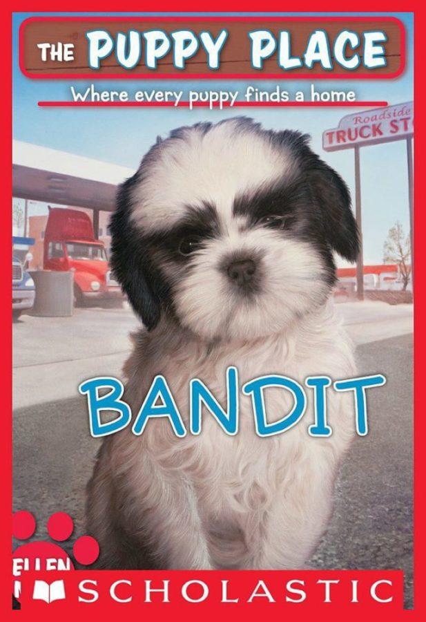 Ellen Miles - Puppy Place, The #24: Bandit