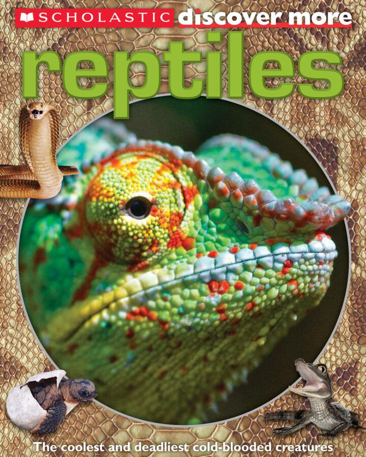 Penelope Arlon - Reptiles