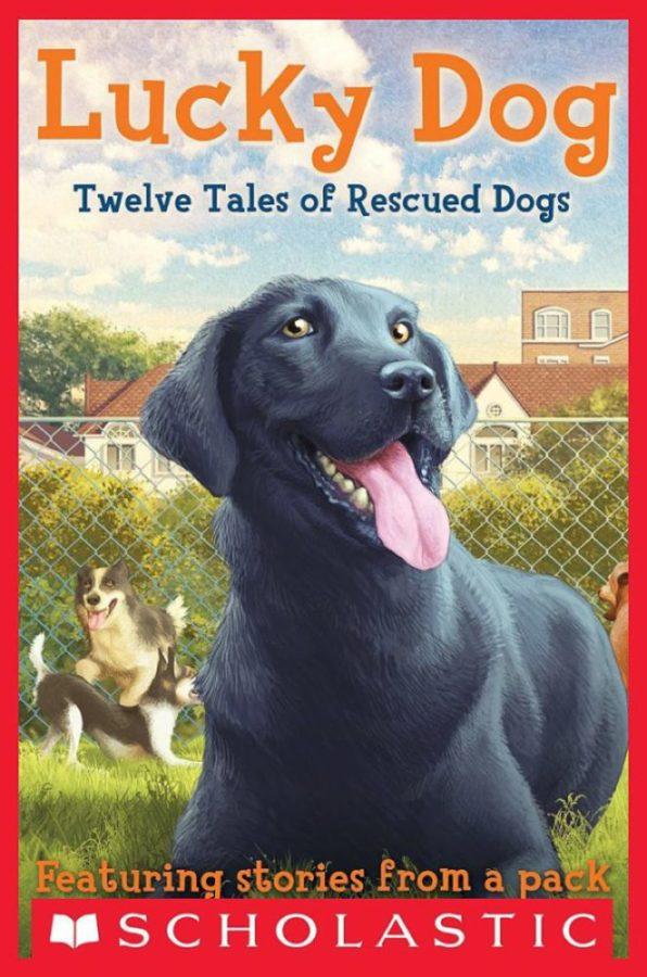 Elizabeth Cody Kimmel - Lucky Dog