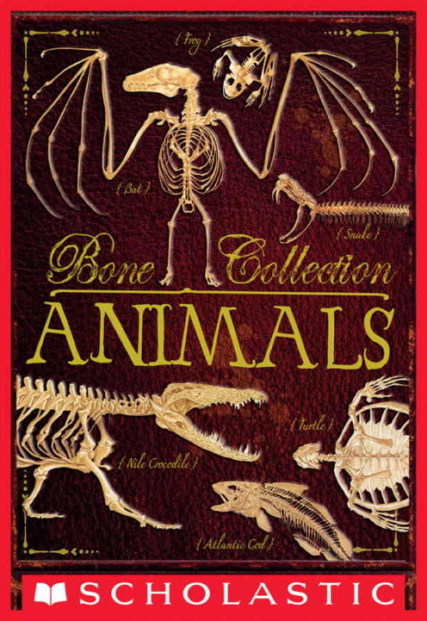 Rob Scott Colson - Bone Collection: Animals