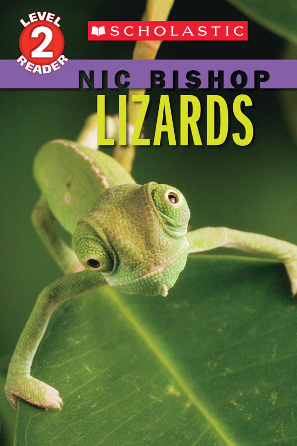 Nic Bishop - Lizards