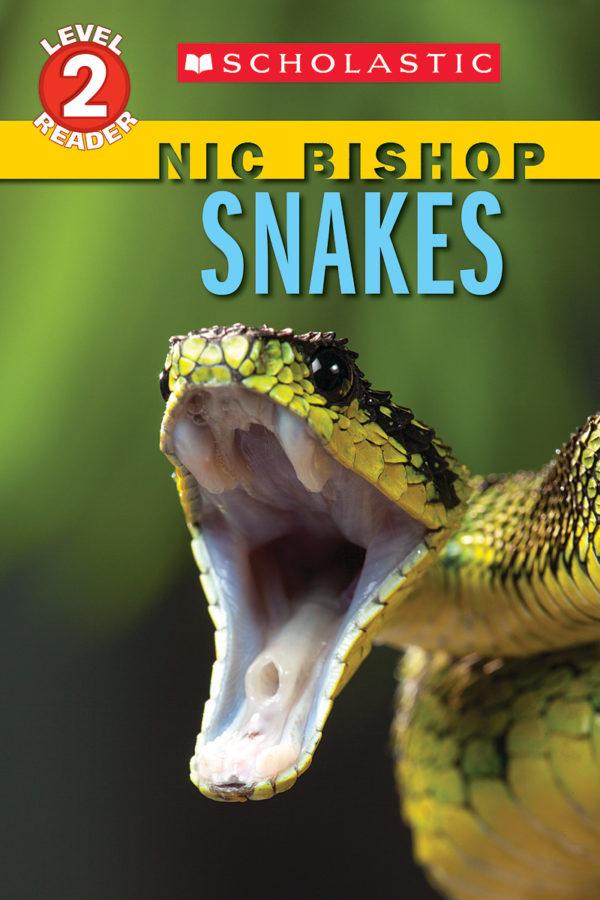Nic Bishop - Snakes