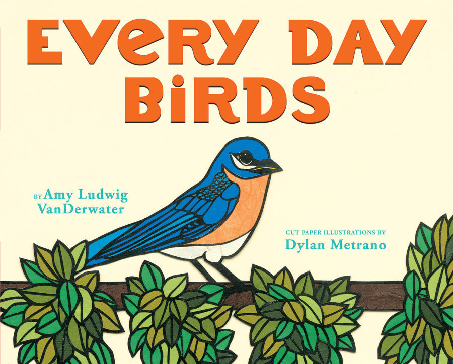 Amy Ludwig VanDerwater - Every Day Birds
